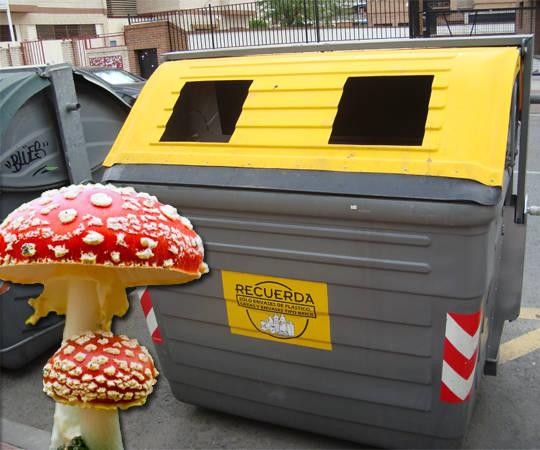 Hongo ayuda a reciclar plásticos