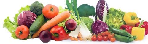 Envasado de productos hortofrutícolas
