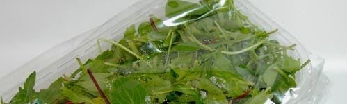 Envases de plástico para el sector alimenticio